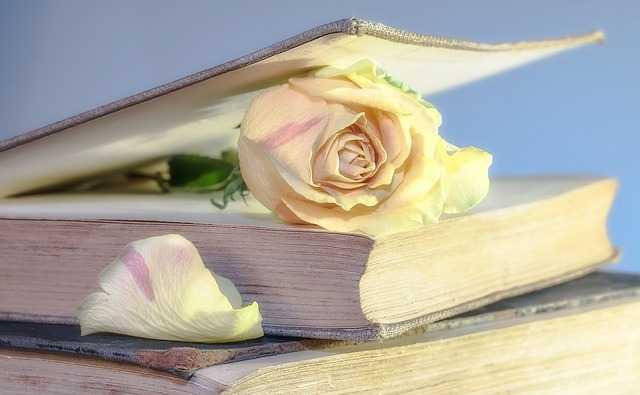 Роза в книге